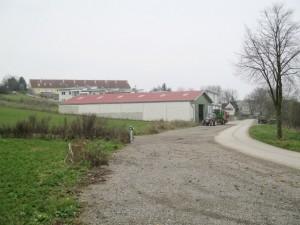 Siedlingsplanung - Fehlanzeige