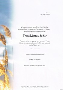 150616ParteMattersdorfer